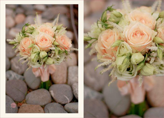 персиковый цвет 1